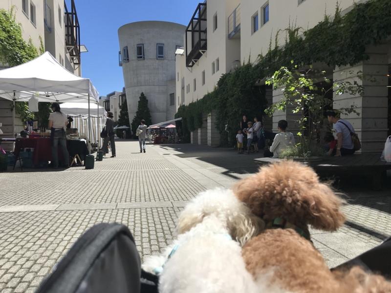 リゾナーレ八ヶ岳のピーマン通りと店舗