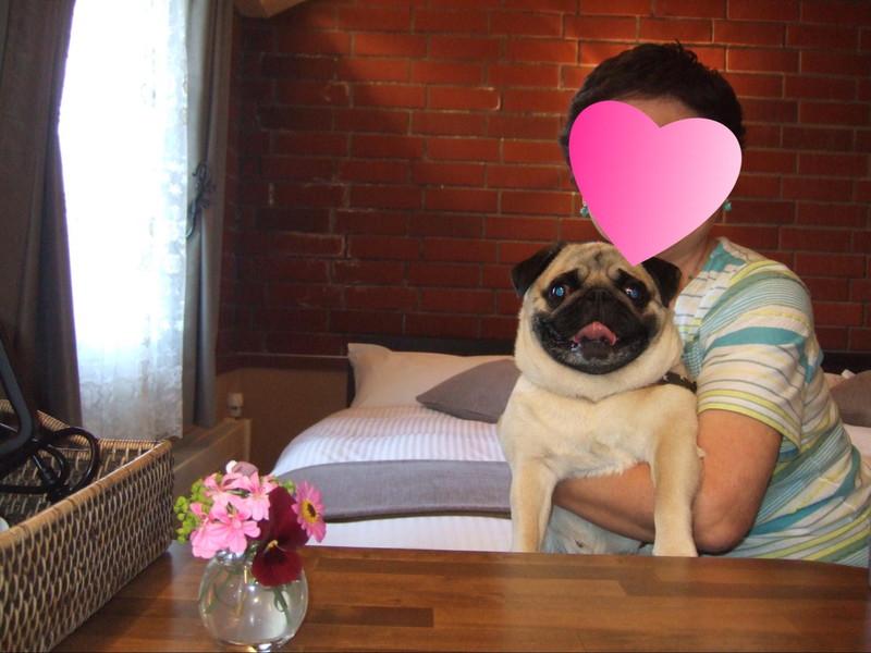 車山高原 オーベルジュ赤煉瓦 お部屋で愛犬と