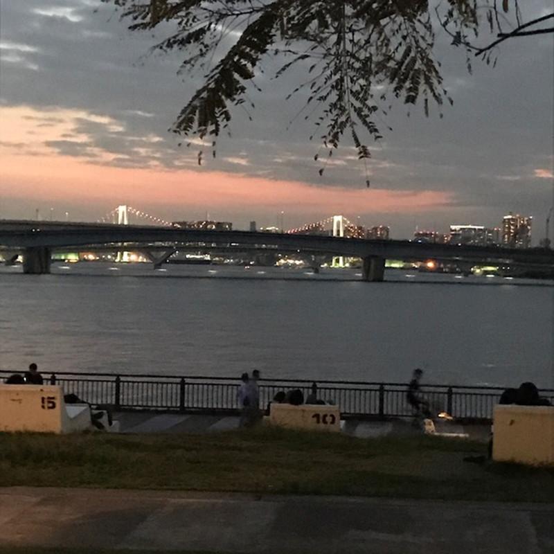 ららぽーと豊洲のドッグランからの夜景、レインボーブリッジ