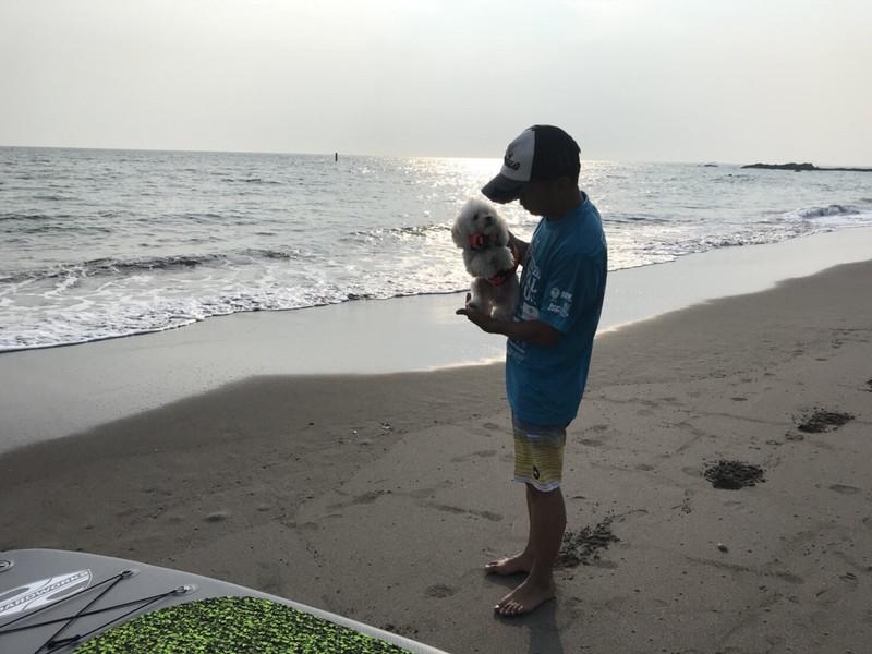 秋谷海岸に立ちトイプードルを抱く少年
