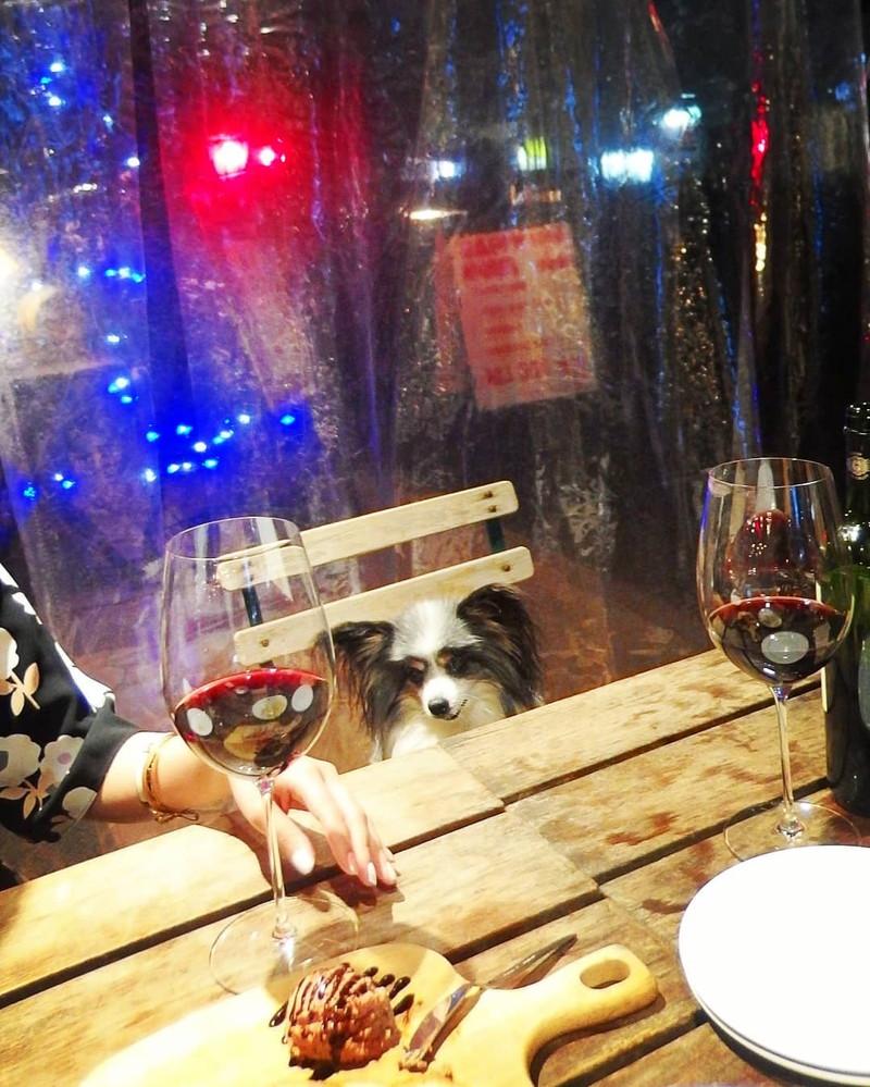雨の日もカフェ・ラ・ボエムのテラス席で食事