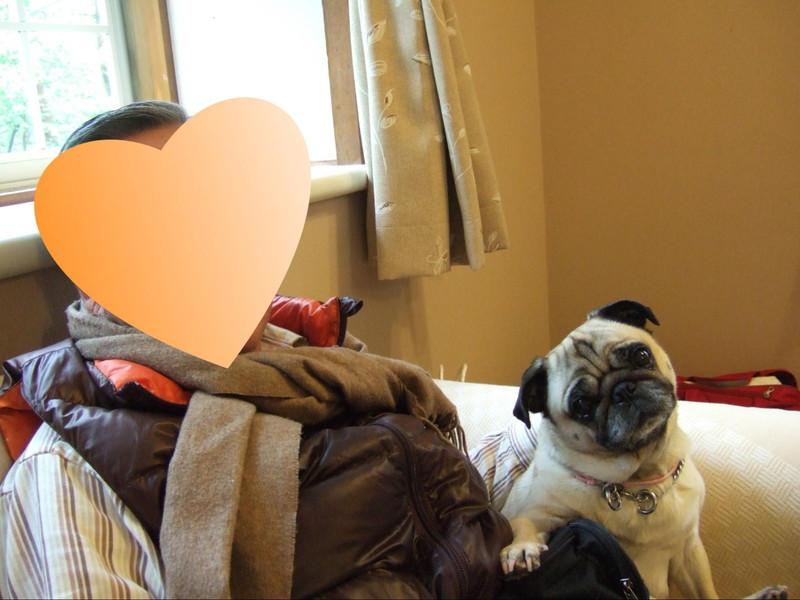 北軽井沢 ペンションブロードウェイ お部屋で愛犬と