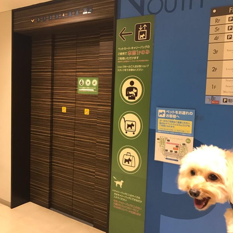 ららぽーと豊洲ワンちゃん連れ用のエレベーター