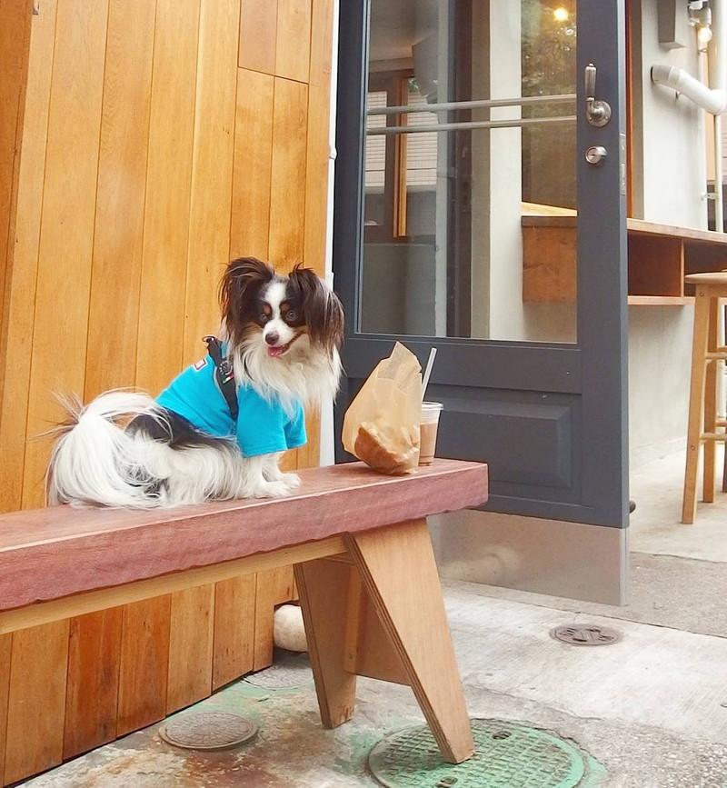 外のベンチで食べてもいいよね 中目黒 sidewalk standにて
