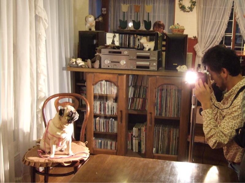 北軽井沢 ペンションブロードウェイで愛犬の写真撮影