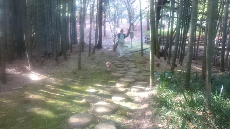 ヒルトン小田原内の散策路