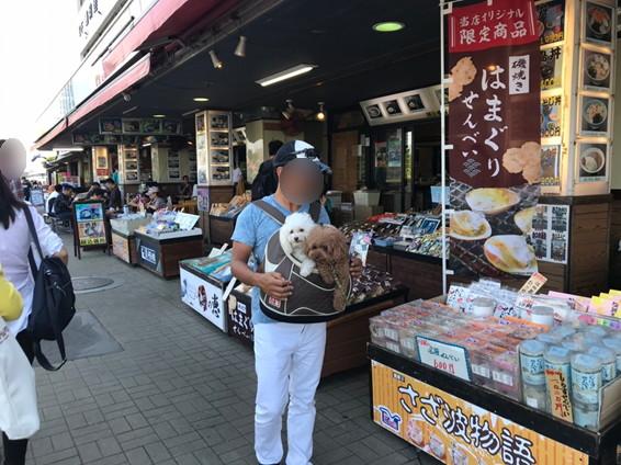 江の島土産店沿道