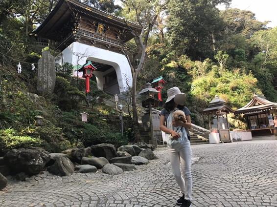 江島神社瑞神門前