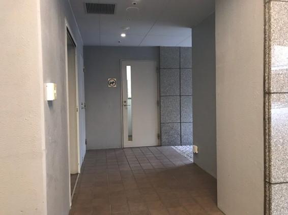 ハイアットリージェンシー箱根ホテル&スパのグルーミングルーム
