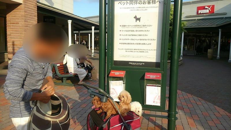 ペット同伴者向け立て看板と愛犬