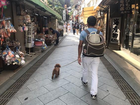 江ノ島 参道商店街