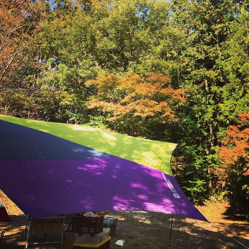少し色づき始めた紅葉の下に設置した我が家のキャンプサイト