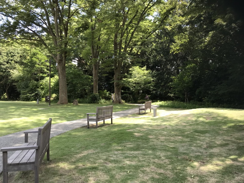横浜俣野別邸公園の芝生広場