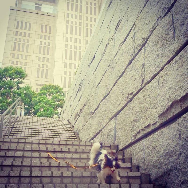 超高層ビルだからおっかないな、逃げようっと!