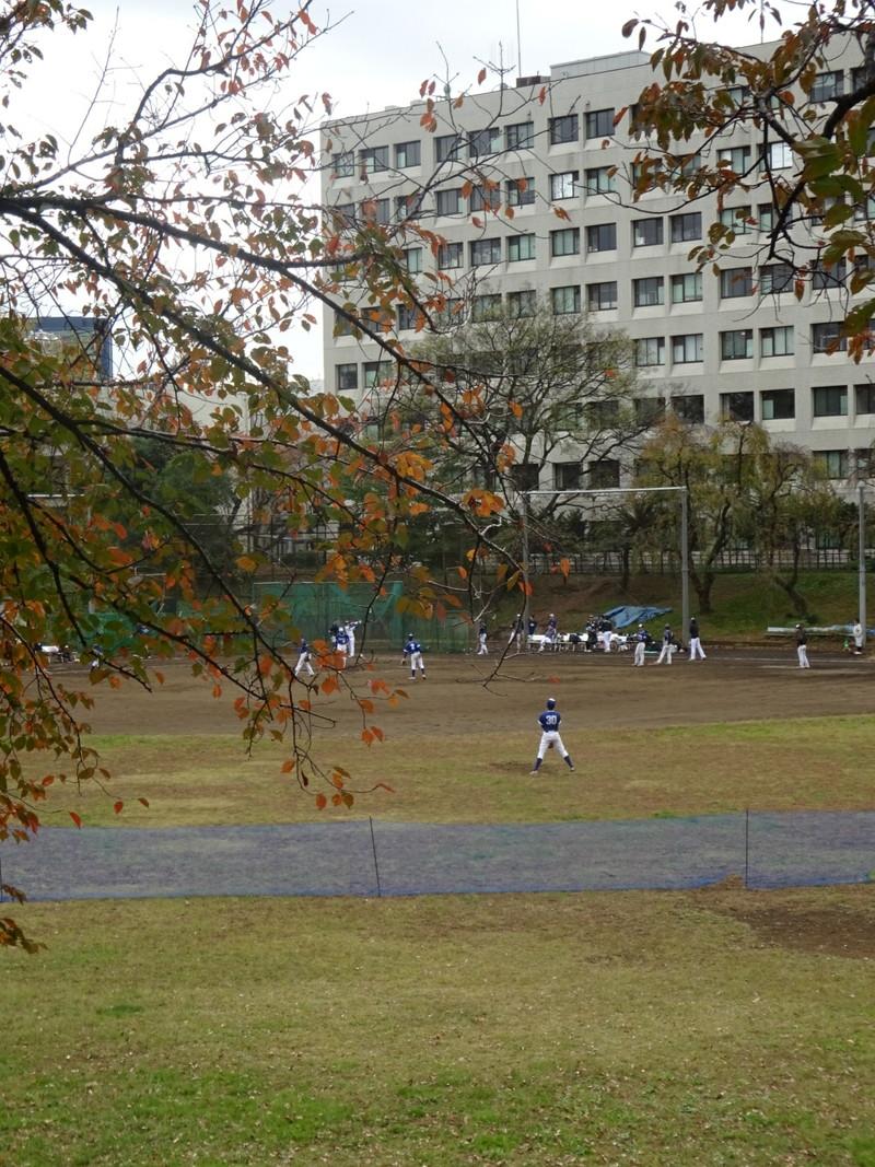 駒場祭の最中、野球部は練習をしていました