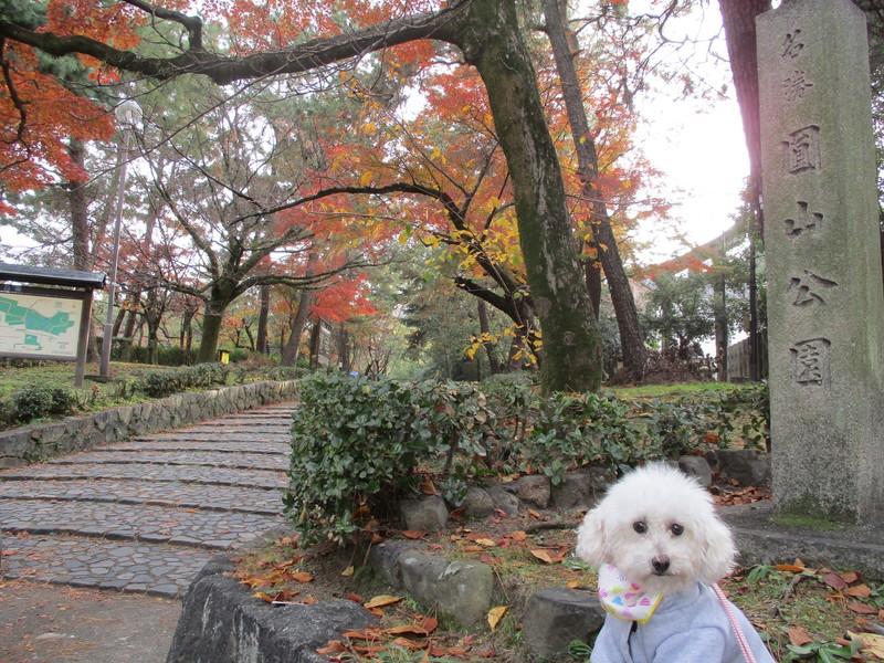 円山公園入口