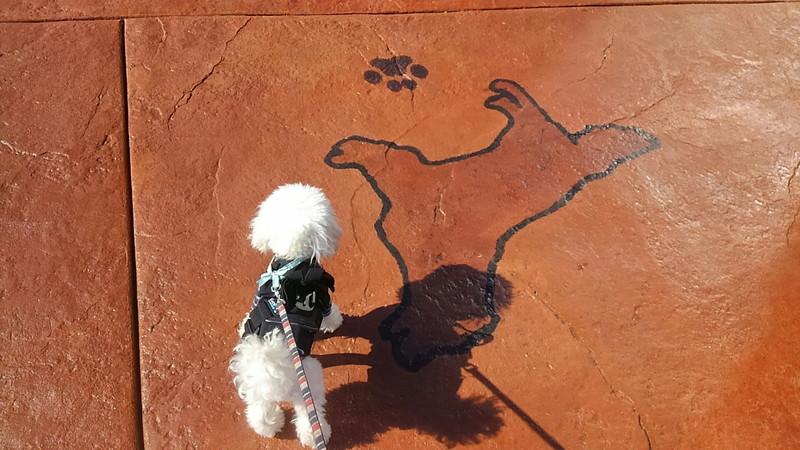 犬型案内板